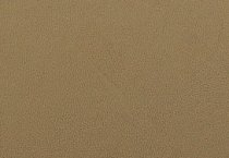 KYDEX / Platte ca. 200x300 mm / Flat Dark Earth - Spring